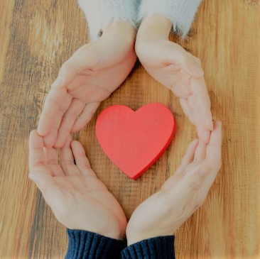 How to Rebuild Trust and Fall Back in Love - Imago Relationships North America
